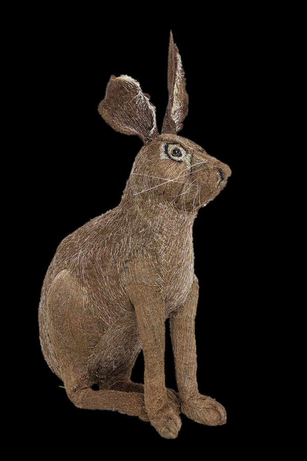 Endangered Species:  Hare